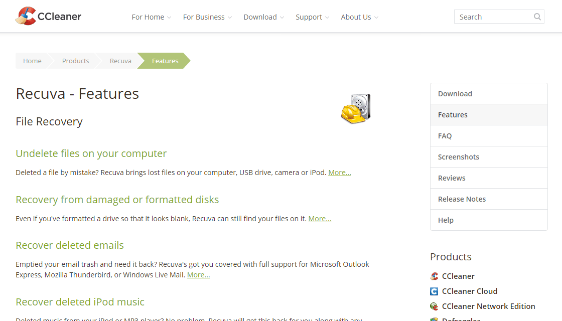 Официальный сайт: особенности